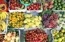 Le secteur des fruits et légumes vise 5 milliards de dollars d'exportations pour 2020