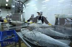 Vietnam-Israël : Les échanges commerciaux dépassent 236 millions de dollars en deux mois