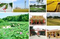 Le Vietnam s'efforce d'atteindre 60% des communes répondant aux normes de Nouvelle ruralité