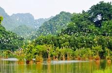 Le Vietnam parmi les 16 pays les plus riches en biodiversité
