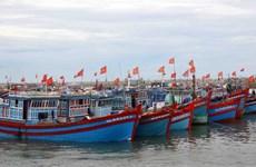 Kien Giang renforce la lutte contre la pêche INN