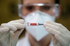 L'Indonésie prépare 339 millions de dollars pour la production d'un vaccin contre le COVID-19