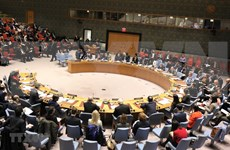 Le Vietnam affirme sa position grâce aux activités au Conseil de sécurité des Nations unies