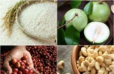 EVFTA : Affirmer la qualité des produits agricoles vietnamiens