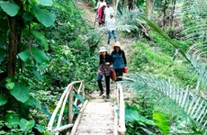 Binh Thuan promeut le développement de produits touristiques associés à une agriculture durable