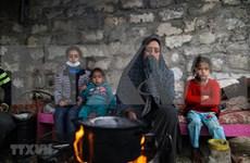 Félicitations à l'occasion de la Journée internationale de solidarité avec le peuple palestinien