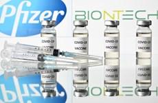 Singapour donne son feu vert au vaccin Pfizer/BioNTech contre le COVID-19