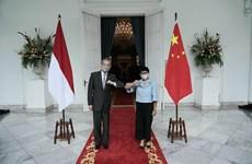 Renforcement de la coopération Indonésie-Chine en réponse à la pandémie de COVID-19
