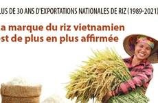 Plus de 30 ans d'exportations de riz: La marque du riz vietnamien est de plus en plus affirmée
