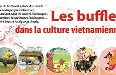 Têt du Buffle: Les buffles dans la culture vietnamienne