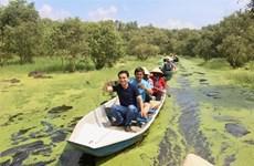 Visite printanière de la forêt de melaleuca Trà Su