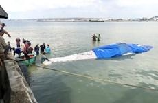 Binh Thuan : Enterrement d'une baleine de plus de 4 tonnes