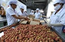 Exploiter pleinement le potentiel d'exportation des produits agricoles vietnamiens vers l'Australie