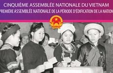 Cinquième Assemblée nationale du Vietnam