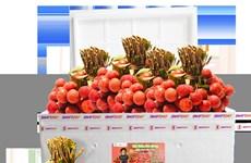 Vietjet s'associe pour promouvoir les exportations et la consommation de litchis
