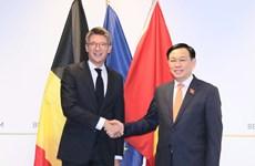 Médias belges : la visite du président de l'AN Vuong Dinh Hue promeut les relations UE-Vietnam