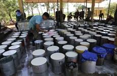 Sept mois: Le Vietnam exporte 23.510 tonnes de caoutchouc aux États-Unis