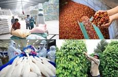 Les exportations de produits agro-sylvicoles et aquatiques affichent 35,5 milliards de dollars