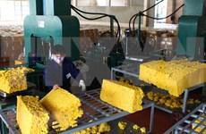 L'industrie du caoutchouc confrontée à la chute des prix à l'exportation