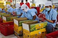 Promouvoir des chaînes de production de produits agricoles destinés aux exportations en Chine