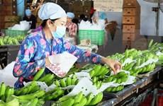 Plus de 1,6 milliard de dollars d'exportations de fruits et légumes en cinq mois