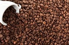 Plus de 1,3 milliard de dollars d'exportations de café en cinq mois