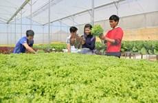 Près de deux milliards de dollars d'APD accordés au secteur agricole ces 20 dernières années