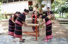 Des instruments de musique typiques des ethnies minoritaire du Tây Nguyên