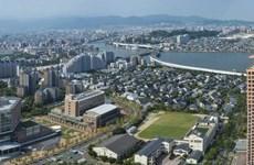 Préparation pour la création d'une association des Vietnamiens à Fukuoka (Japon)