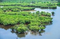Le gouvernement publie un décret sur la préservation des zones humides