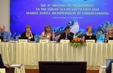 Conservation des tortues marines : la 8ème réunion des États signataires de l'IOSEA MoU à Da Nang