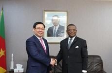 Le vice-Premier ministre Vuong Dinh Hue en visite de travail au Cameroun