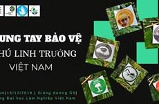 Des jeunes vietnamiens contribuent à la protection des primates