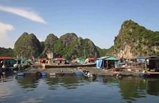 Cai Beo - le plus ancien village de pêcheurs du Vietnam