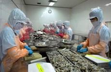 Les crevettes – produit d'exportation phare du Vietnam