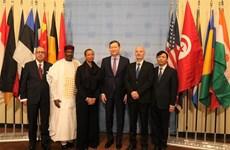 Le Vietnam entame sa présidence du Conseil de sécurité de l'ONU