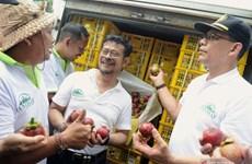 L'Indonésie accélère ses exportations de mangoustans de Bali