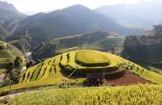 CNBC fait l'éloge de la beauté de Mu Cang Chai