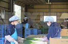 COVID-19 : aucun cas vietnamien d'infection n'a été enregistré au Japon
