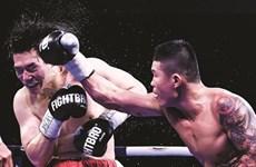 Truong Ðình Hoàng, roi de la boxe