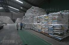 Les réserves alimentaires vietnamiennes assurent toujours une réponse d'urgence