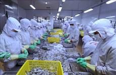 Les exportations de produits aquatiques en baisse de 10 % au premier semestre