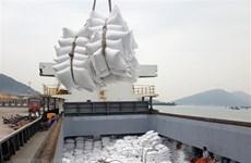 Hausse de près de 18% des exportations de riz au premier semestre