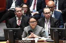 Conseil de sécurité : l'Indonésie appelle à maintenir la paix pendant la pandémie de COVID-19