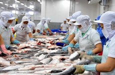 Douze entreprises vietnamiennes autorisées à exporter des produits aquatiques vers l'Arabie saoudite