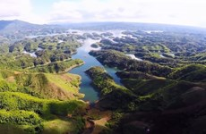 Journée mondiale de l'environnement 2020: efforts pour diffuser des «actions vertes»