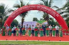 EVFTA : 126 tonnes de riz parfumé du Vietnam exportées vers l'Union européenne