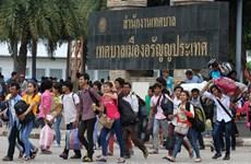 COVID-19 : les travailleurs migrants en Thaïlande se verront accorder un délai de grâce