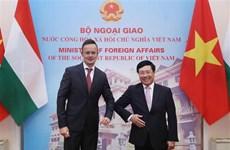 Vietnam-Hongrie : entretien entre les deux ministres des Affaires étrangères