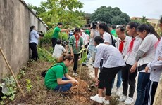 Lancement d'une campagne de plantation de 4.000 arbres à Hanoï